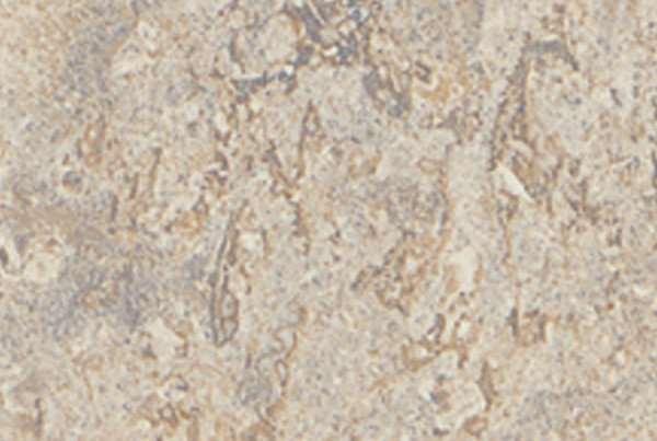 1858K Silver Travertine